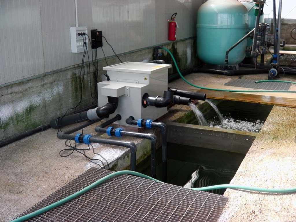 gold-fish-italia-impianto-filtrazione (1)
