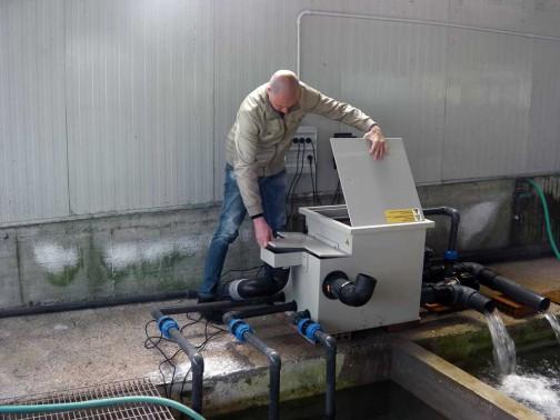 gold-fish-italia-impianto-filtrazione (3)