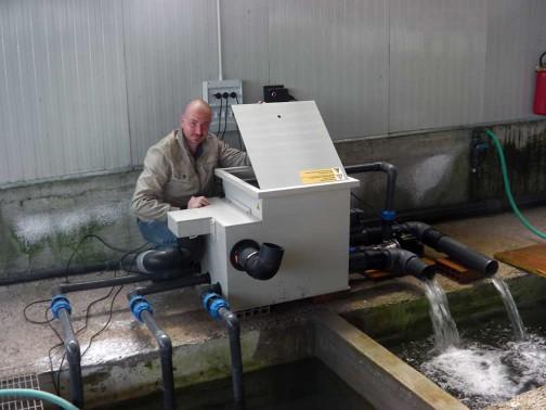 gold-fish-italia-impianto-filtrazione (4)